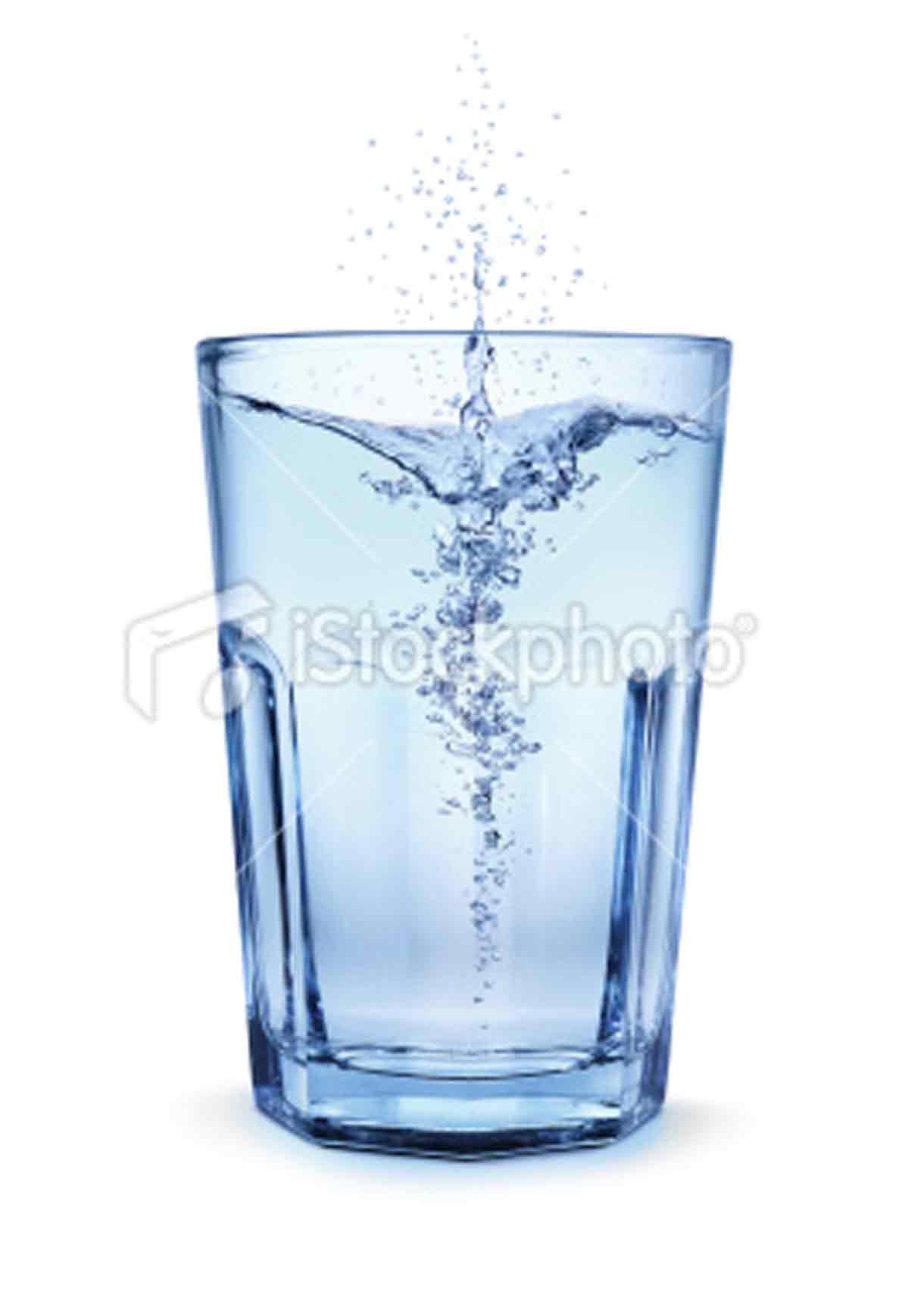 Drinking Salt Water Cat