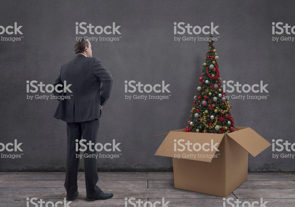 Businessman With Christmas Tree In The Cardboard Box Mgkaya